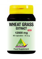 Wheat Grass Extract 12500 mg Pure